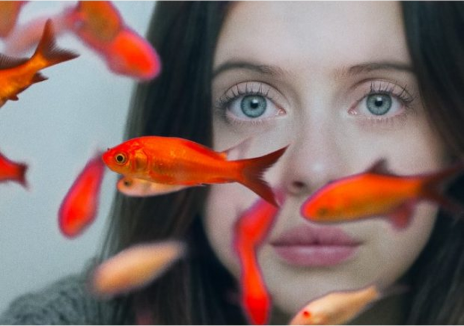 Stereotyped Characters Come to Life: Carrie Pilby Film Review