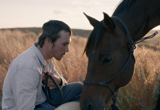 The Rider Film Review