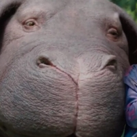 An Extreme Take on the Food Industry: Okja Film Review
